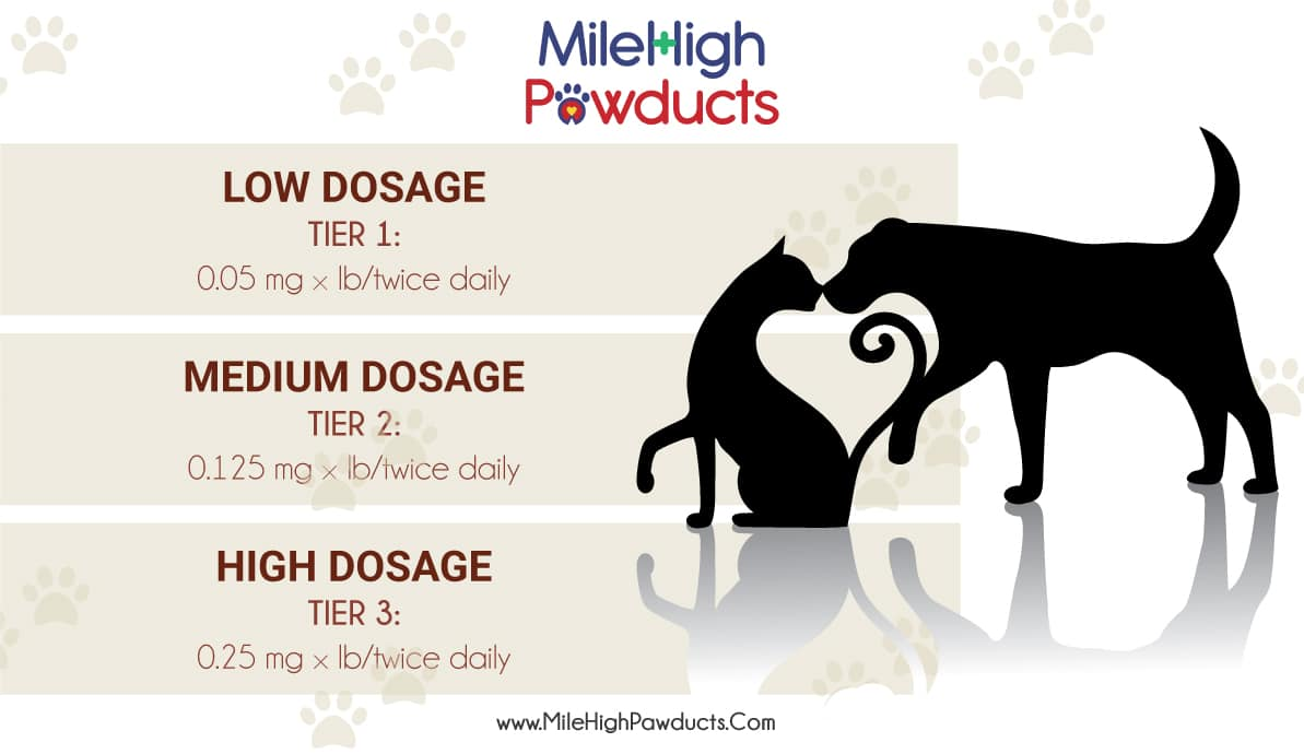 Guide to CBD Dosage for Cats and Dogs: Dosage Chart |